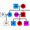 Heredity and ABO Blood group system